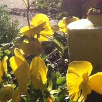 Yellow for third chakra