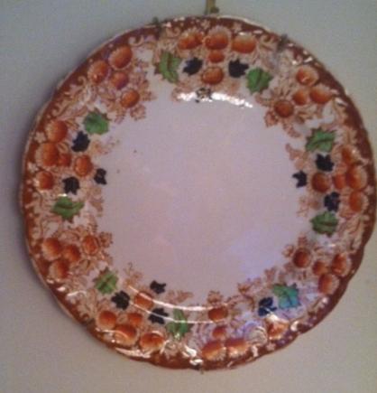 Druid Bernie's Plate