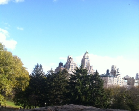 A view from Central Park