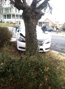The car against the tree