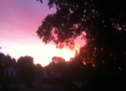 The pink of the morning sky